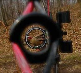 modern bow peep sight