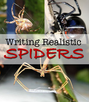 writing realistic spiders
