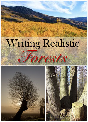 writing realistic forests
