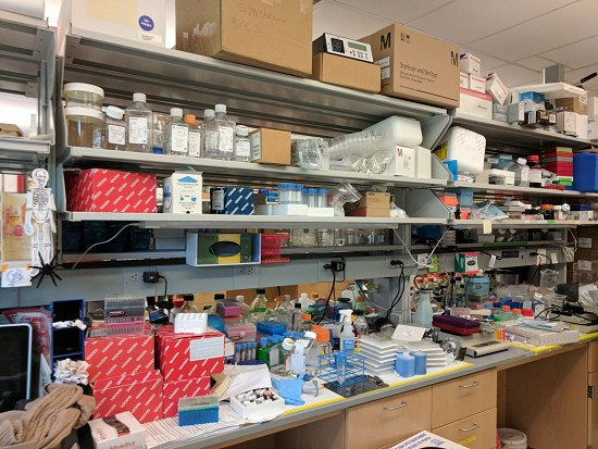 lab sights bench